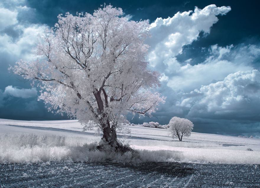 infrared-photography11