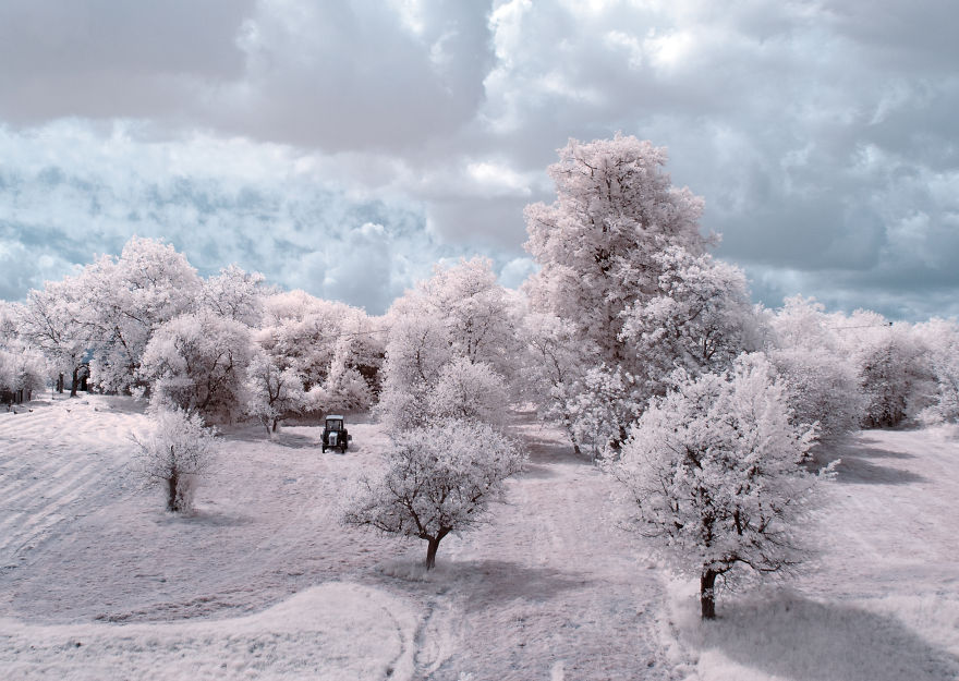 infrared-photography3
