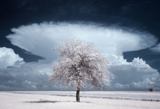infrared-photography4