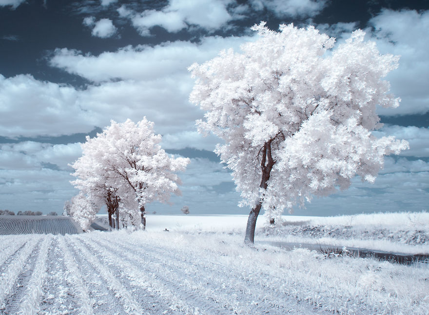 infrared-photography7