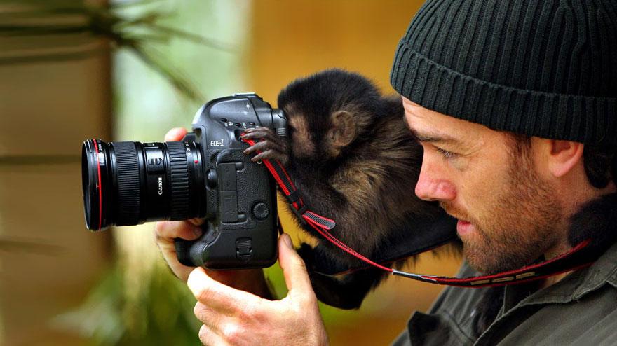 zhivotnye-kotorye-hotyat-stat-fotografami-5