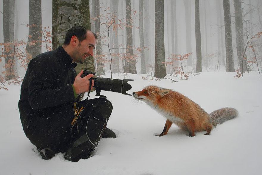 zhivotnye-kotorye-hotyat-stat-fotografami-6