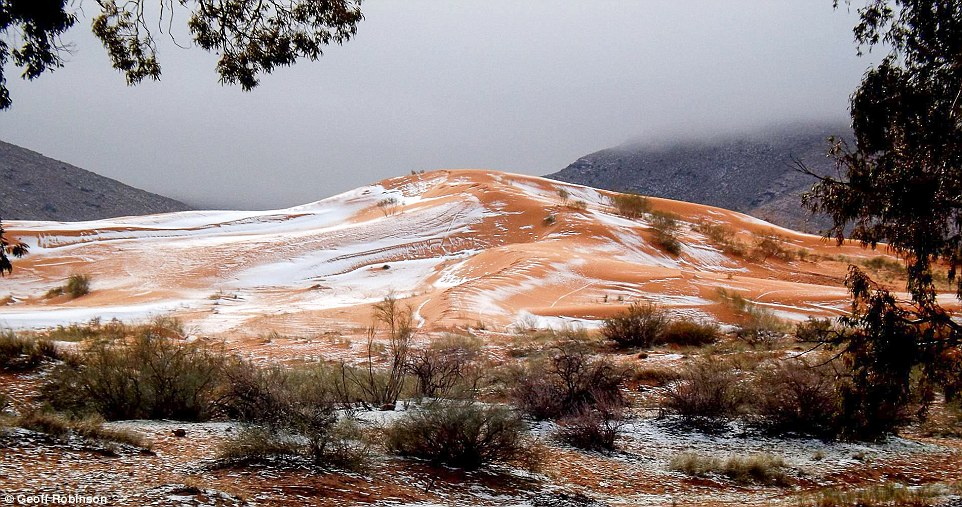 3b88fcfd00000578-4051448-karim_captured_the_amazing_moment_snow_fell_on_the_red_sand_dune-a-79_1482235554953