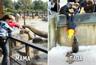 Shodili-s-syinom-v-zoopark