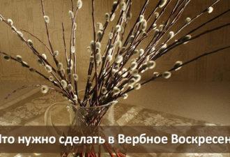 crop_167302377_OOvtmH