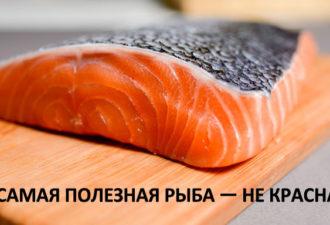 crop_168039340_jqPrK