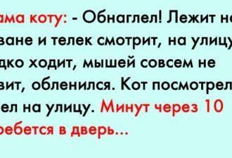crop_168231609_MIdNf