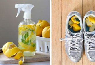 16_ways_to_use_lemons_featured-696x365