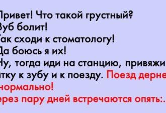 crop_169023017_ga9To
