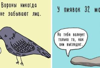 zhiv-facts-cov