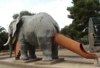 16gorka-slon