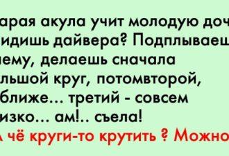 crop_169713405_C4M0n