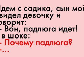 crop_169870387_vVkJy