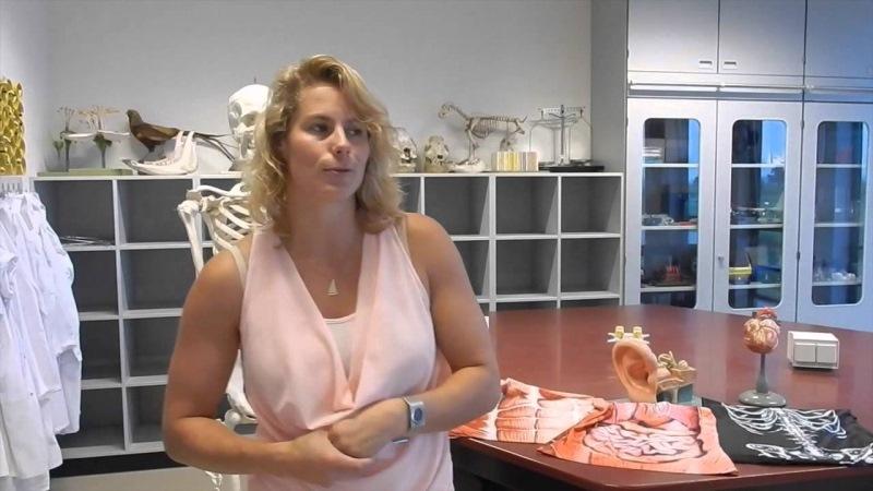 Девчонки на уроке анатомии