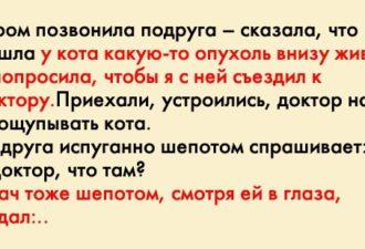 crop_170807934_IOpKchv