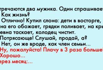 crop_170938862_5LLuIf