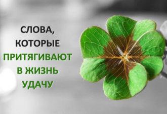 crop_171809351_tglYI6