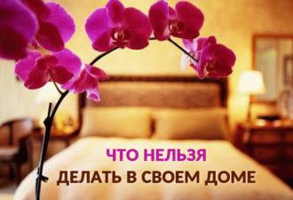 crop_172827767_VjbNAg