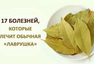 crop_173115646_u73i