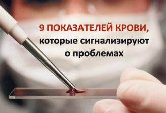 crop_173291374_K3Ktl2